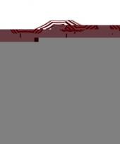 Rood gestreepte strandparasol 180 cm trend