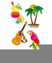 Samengesteld pakket hawaii feest klein trend