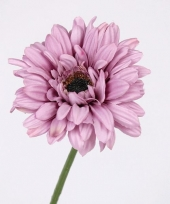 Satijnen kunst gerbera lila 63 cm trend