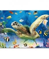 Schildpad placemat 40 cm trend