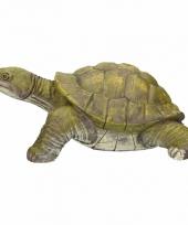 Schildpadden beelden 39 cm trend