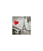 Servetjes liefde eiffeltoren 20 stuks trend