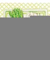 Servetten asperges 3 laags 20 stuks trend