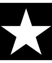 Servetten hollywood ster print zwart white 3 laags 20 stuks trend