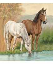Servetten paarden 3 laags 20 stuks trend