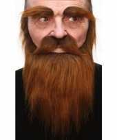 Set met baard snor en wenkbrauwen bruin trend