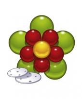 Setje mooie zelfmaak ballonnen bloem trend