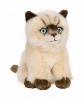 Siameze poezen katten knuffel 15 cm trend