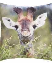 Sierkussen met print van giraffe 30 x 30 cm trend