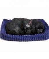 Slapende labrador puppy zwart trend