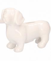 Spaarpot hond teckel wit 20 cm trend