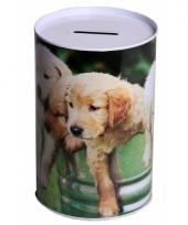 Spaarpot honden 15 cm type 3 trend