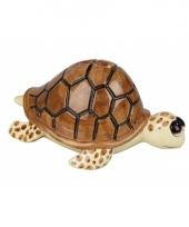 Spaarpot schildpad 18 cm trend