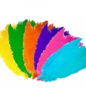 Spadonis sierveren diverse kleuren trend