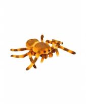 Speelgoed knuffel spin 27 cm trend