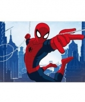 Spiderman 3d placemat type 1 trend