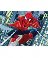 Spiderman 3d placemat type 2 trend