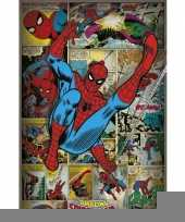 Spiderman comicbook poster collage trend
