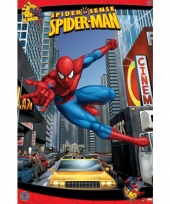 Spiderman comicbook poster ntc trend