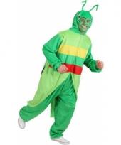 Sprinkhaan kostuum voor volwassenen trend