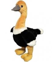 Struisvogel knuffel 43 cm trend