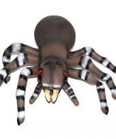 Tarantula van 45 cm trend