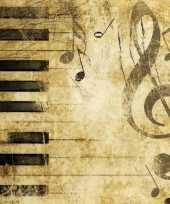 Thema muziek servetten 20 stuks trend
