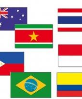 Tropisch feest dekoratie vlaggen trend