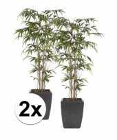 Tropische kunstplant bamboe promo 150 cm 2 stuks trend