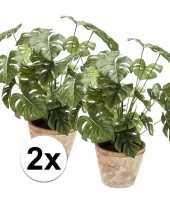 Tropische kunstplant monstera 50 cm 2 stuks trend