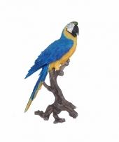 Tropische vogel beeld blauwe papegaai 70 cm trend