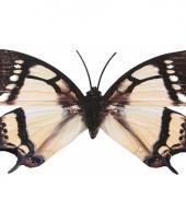 Tuin vlinder metaal zwart wit 42 cm trend