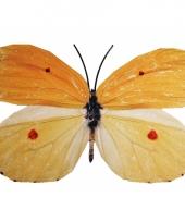 Tuin vlinder van metaal geel oranje 30 cm trend