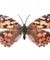 Tuin vlinder van metaal gevlekt 30 cm trend