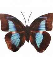 Tuin vlinder zwart lichtblauw metaal 30 cm trend