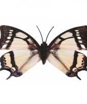Tuin vlinder zwart wit metaal 30 cm trend