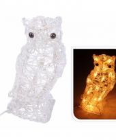Uil met verlichting op led lampjes 30 cm trend