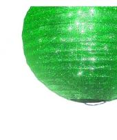 Unieke groene lampion met glitters trend