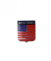Usa vlag kleine pin trend