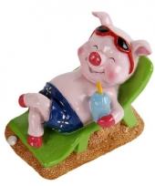 Vakantie varken spaarpot man trend
