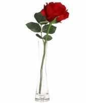 Valentijnscadeau rode roos 30 cm in smalle vaas trend