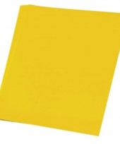 Vellen karton geel 48x68 cm trend
