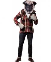 Verkleed pakketje hond trend