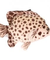 Vis knuffeltje bruin gevlekt 21 cm met kraalogen trend