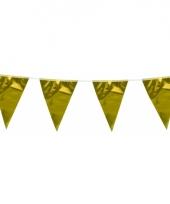 Vlaggenlijn goud 10 meter trend