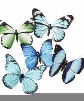 Vlinder magneetje blauw groen 13 5 cm trend