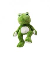 Warme knuffel kruik groene kikker amfibie trend