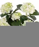 Wit groene hortensia kunstplant 36 cm trend