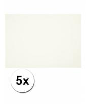 Wit knutselpapier a4 formaat 5 stuks trend