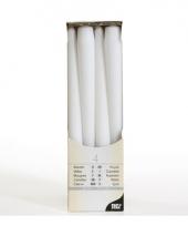 Witte kaarsen 25 cm trend
